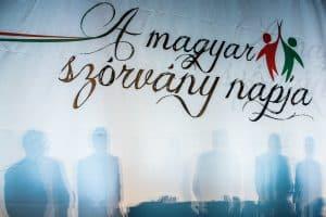 2017_11_18_szorvanynap
